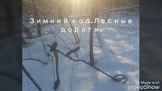 Зимний коп по лесным дорогам.