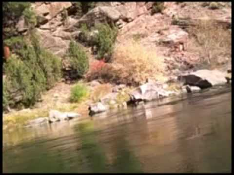 Fly fishing on the green river flaming gorge utah youtube for Green river utah fishing report