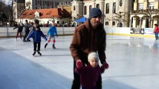 Pszczyna 2014 - Zamek, zabytkowy park, rynek i lodowisko