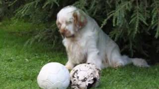 Karlsson with his old fotball and his new one :o)