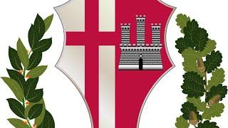 Comune di Città di Castello - Consiglio Comunale del 14 settembre 2020