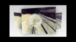 Ừ Thì Khoảng Cách-LorenKid ft. Ron & R.I.C