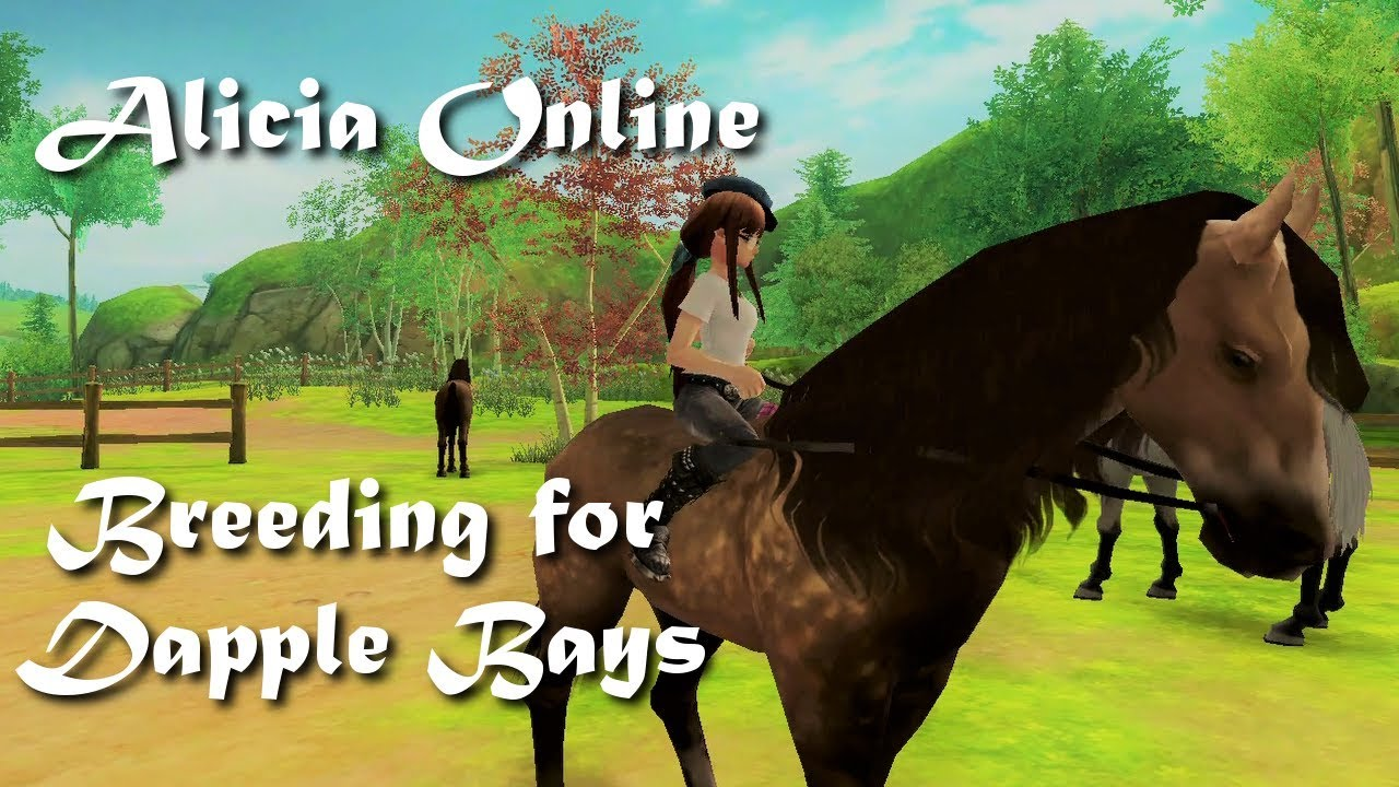 Alicia Online - Breeding for the new Dappled Bay !!!!