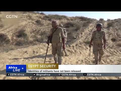Egypt government claims security forces killed 12 militants in Sinai