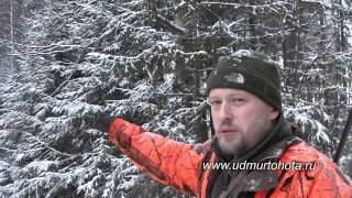 Охота на лося загоном в Удмуртии Elchjagd Russland elk hunt Russia