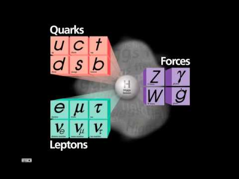 1. elementary particles