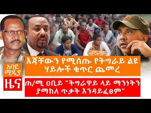 Abbay Media Daily News November 8,2020 አባይ ሚዲያ ዕለታዊ ዜና Ethiopia News Today