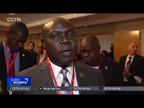 Tunisia hosts African education, empowerment forum