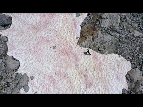 شاهد: ظاهرة غامضة تظهر في جبال الألب الإيطالية ... والعلماء يحققون…  - نشر قبل 3 ساعة