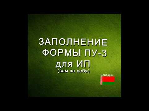 Форма ПУ-3 в ФСЗН для ИП в Беларуси