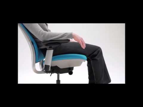 Steelcase Amia Adjustable Office Chair