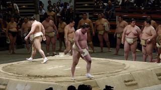 Yokozuna Hakuho and Harumafuji doing a bit of butsukari to close ou...