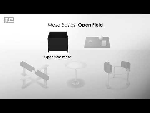 Open Field Test: A Measure of Anxiety