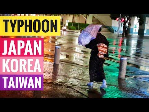 ⚡Super Typhoon threatens Japan + Korea + Taiwan ☔ Kong Rey storm
