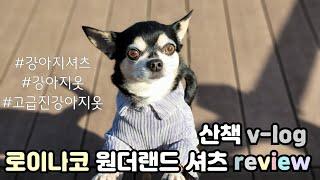 [제품리뷰] 로이나코 원더랜드 강아지 셔츠 자켓 리뷰 …