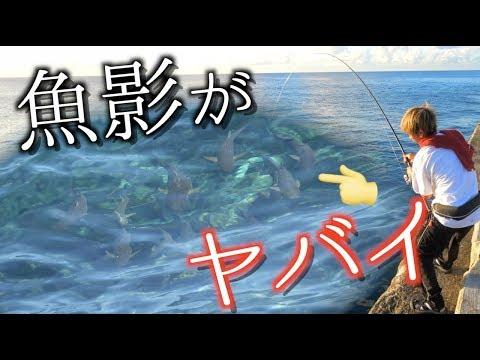 �釣り王国】�大�島�大物を狙��� 1話