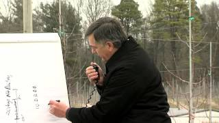 The New Tall Spindle Apple Orchard System: Field demonstration lecture