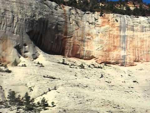 Condor at Angels Landing.AVI