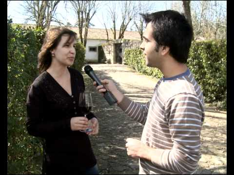 Prove Portugal - Beira Alta - Quinta dos Passo de Cunha de Santar