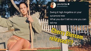 Cherry Blossom might be released, Chemtrails Charts, Rolling Stones Cover and More   Lana Tuesday