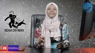 KICHAA CHA MBWA:Dalili,Sababu,Matibabu