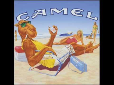 Mancora - Camello