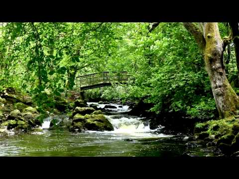 RELAXING Tranquil Music-Nature Sounds-Flowing Water-Birds Song-Grieg-klassisk musik-lugn musik