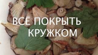 ВОЛНУШКИ, соление грибов