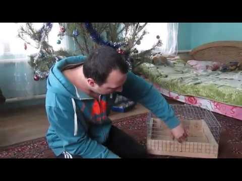 Как сделать игрушку своими руками для морской свинки