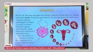 8045 - Biologji - Ndërtimi Dhe Funksioni I Organeve Riprodhuese Femërore Të Njeriut