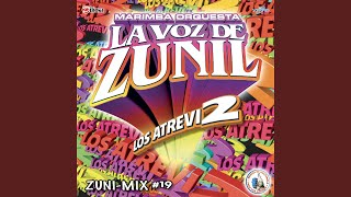 Zuni-Mix Cumbias # 17: Felices los 4 / Traicionera / Subeme la Radio