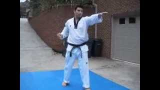 Basic Motion Set Taekwondo Form