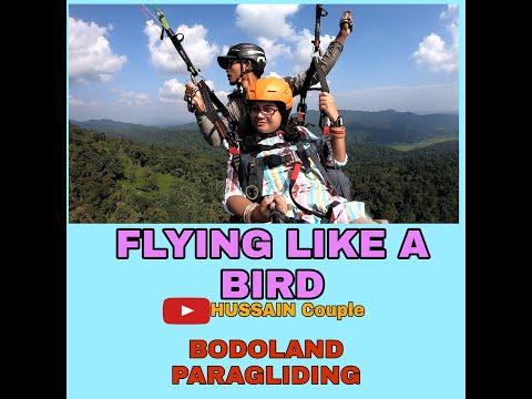 FLYING LIKE A