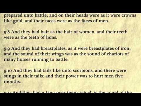 Revelation - King James Bible, New Testament (Audio Book)