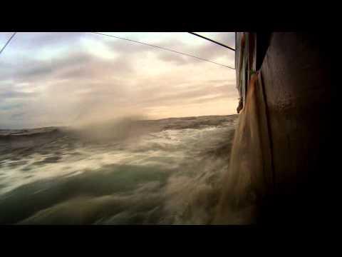 Leviathan - Documental de Observación