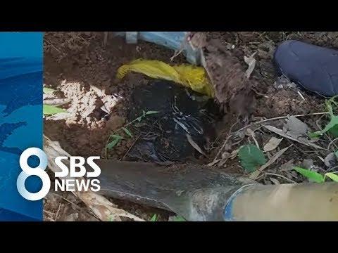 공무원 집 마당에 수천만 원 돈뭉치의 정체 / SBS