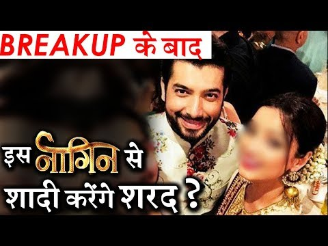 Is Ssharad Malhotra Dating THIS 'Naagin' Actress ?