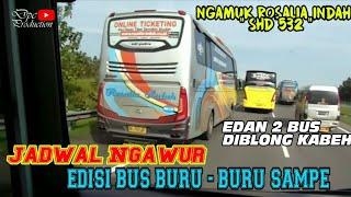"""BURU - BURU SAMPE"" || ROSALIA INDAH 532 LARI KESETANAN ! DIKEJAR 3 PO HARYANTO JAM MEPET !"