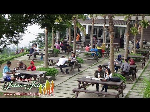 Indonesia Tourism Video 2016 #1 - Obyek Wisata Pondok Kopi Umbul Sidomukti Semarang Jawa Tengah