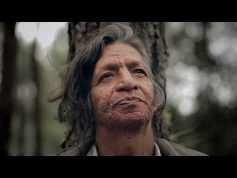 Tío Yim (Trailer)