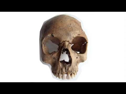 Janet Montgomery - Isotope Analysis of Skeletons