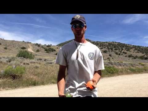 Multiplex juggling tutorial part 1