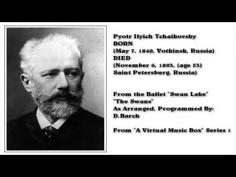 The Swans; from Swan Lake Ballet, by: P. Tchaikovsky (Arranged & programmed by D.Barch)
