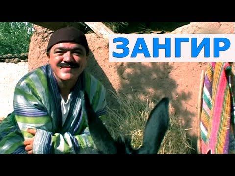 Шухихои Аловуддин -