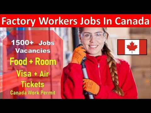 Hiring Factory Worker In Canada 1500+ Job Vacancies