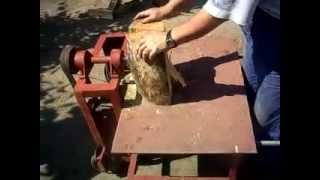 rzecz o pracy na wsi