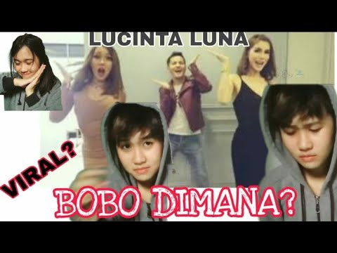 REACTION VIDEO PALING VIRAL!!! BOBO DIMANA - LUCINTA LUNA DAN KAWAN KAWANNYA :'V