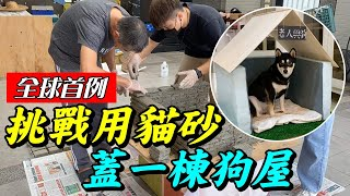挑戰用貓砂,蓋一棟狗屋!『全球首例準備申請專利』The first person in the world to challenge cat litter to build a dog house