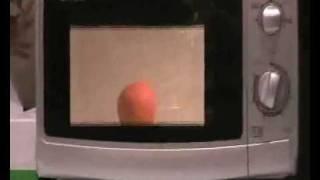 Adam & Day Put A Orange Inside A Microwave