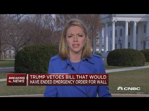 President Trump signs first veto, blocks bill that would have ended  emergency declaration